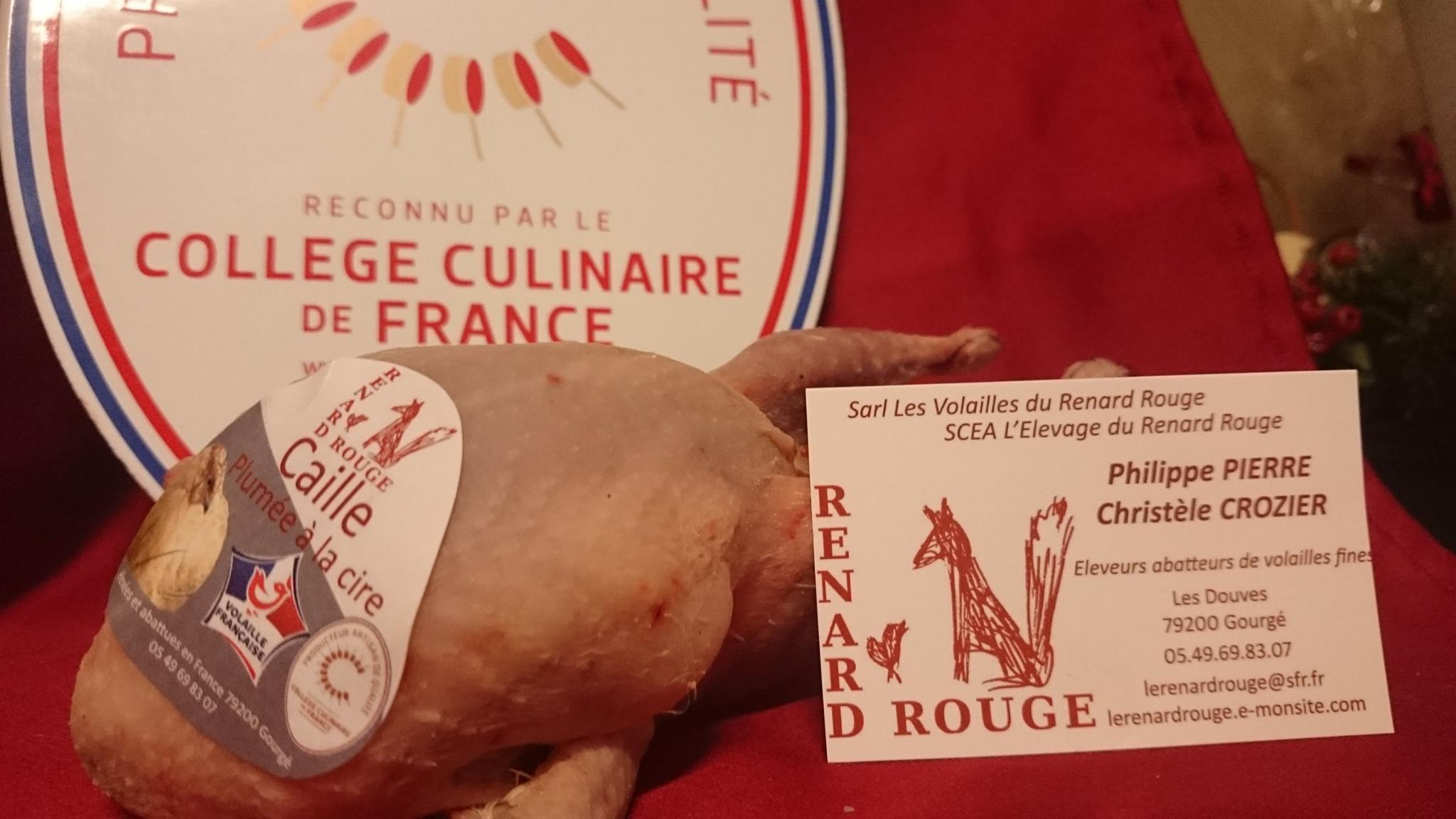 Adhérent LES VOLAILLES DU RENARD ROUGE - photo #2203