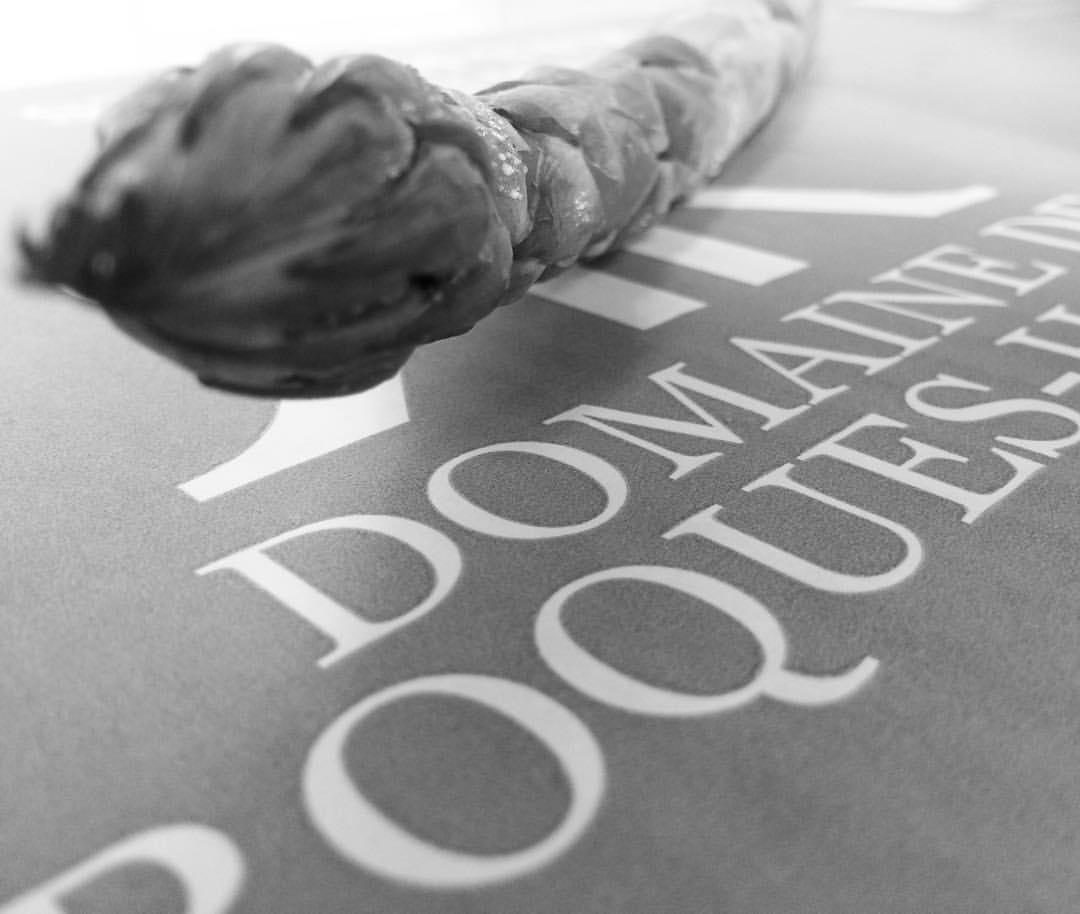 Adhérent DOMAINE DE ROQUES-HAUTES - photo #1655