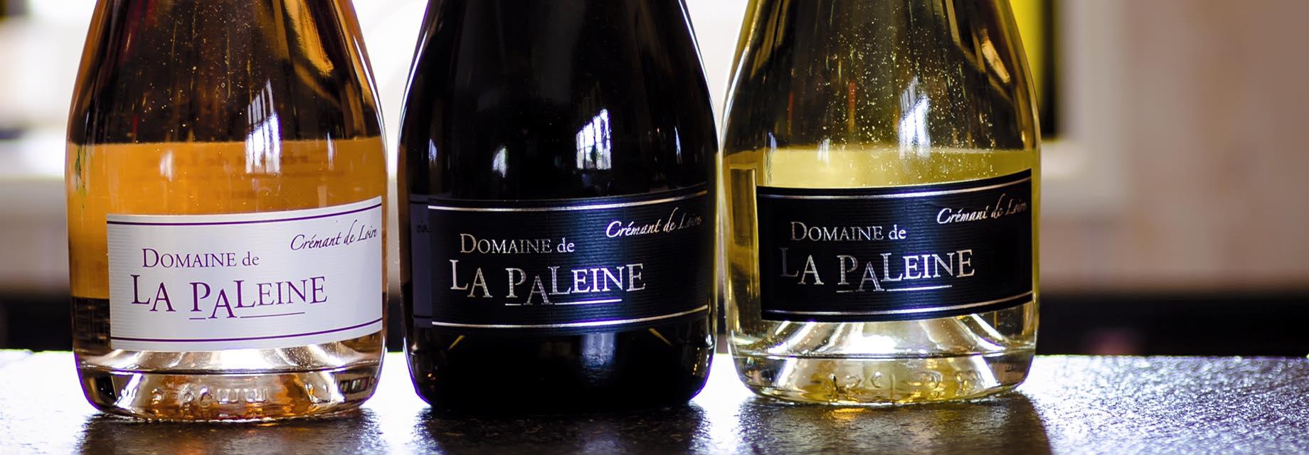 Adhérent DOMAINE DE LA PALEINE  - photo #6377