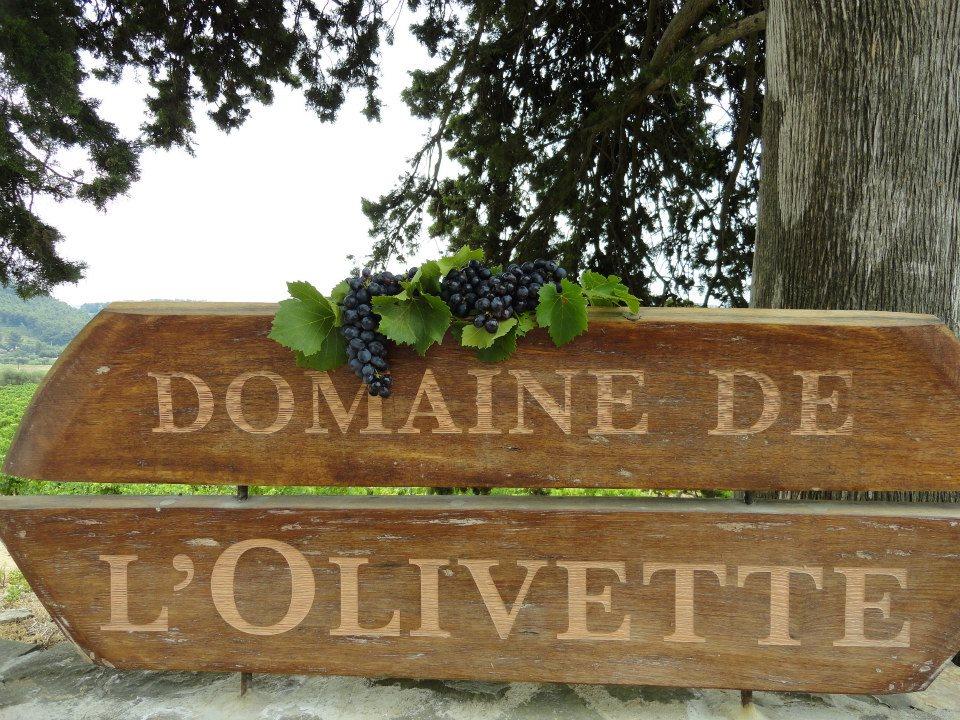 Adhérent DOMAINE DE L'OLIVETTE - photo #6422