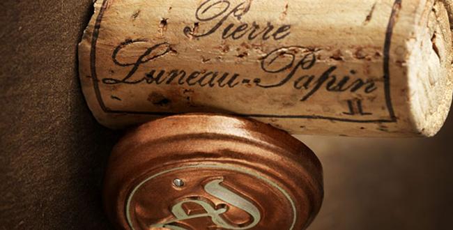 Adhérent DOMAINE PIERRE LUNEAU PAPIN - photo #7587