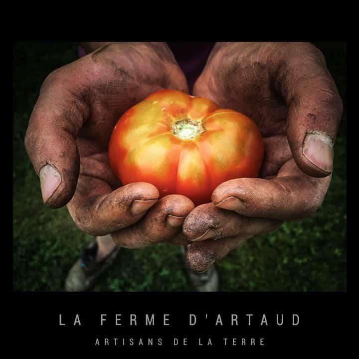 Adhérent LA FERME D'ARTAUD - photo #9142