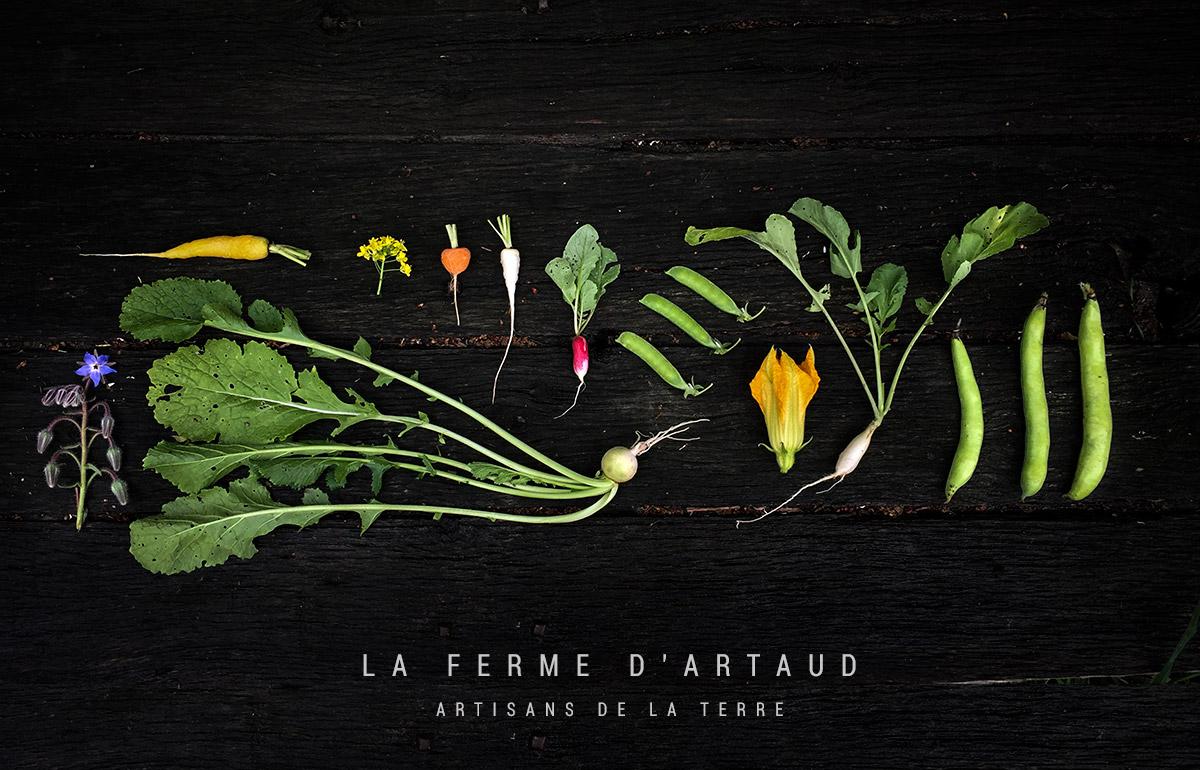 Adhérent LA FERME D'ARTAUD - photo #9188