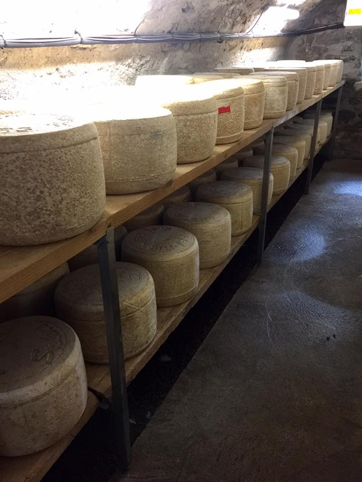 Adhérent FROMAGERIE HOULBERT - photo #13386